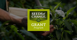 UNIS Goes Green with Seeds of Change Competition